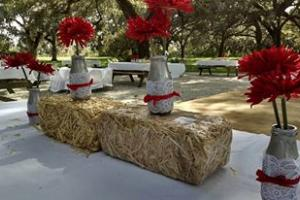 Looking for Rustic, Country Venues?